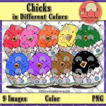 Chicks in Different Colors