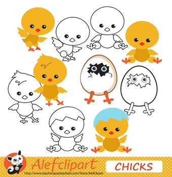 Chicky for Spring.Clip art. FREE!