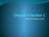 Child Development Powerpoints and Note Guides