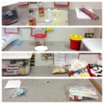 Child Development unit 4 days 4-6 First Year of Life Labs and stations