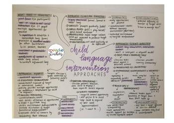 Child Language Intervention Options