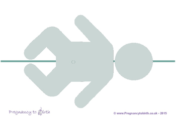 Childbirth Education - Labour line