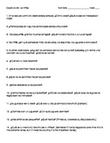 Childhood Activity- Questionnaire (imperfect tense) (Reali