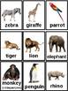 Children's Animal Flash Cards