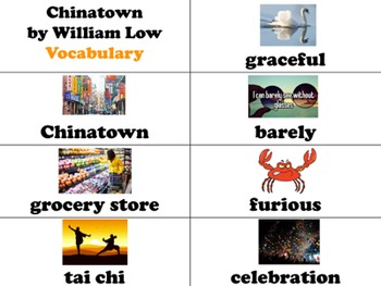 Chinatown by William Low Vocabulary Visuals (for ELLs)