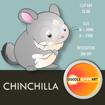 Chinchilla Clip Art