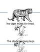 Chinese Animals Book