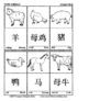 Chinese Flash Cards - Simplified Characters