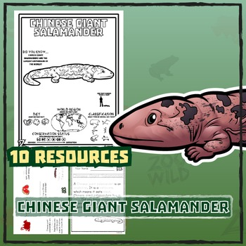Chinese Giant Salamander -- 10 Resources -- Coloring Pages, Reading & Activities