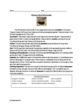 Chinese Giant Salamander - Review Article Questions Vocabulary Word Search