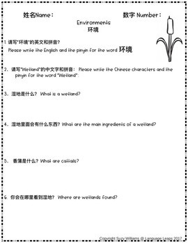 Chinese Immersion: 4th Grade Science Review or Homework Pages