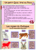 French Chinese New Year full lesson for beginners