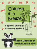 Chinese Pronouns Lesson, Packet 3