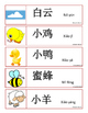 Chinese Spring Theme Word Wall Words