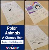 Learn Chinese - Polar Animals - Mandarin Teaching Materials