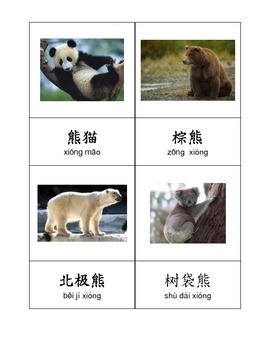 Chinese Vocabulary - Zoo Animals