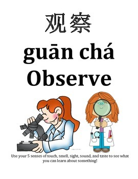 Chinese, pinyin, English Science Posters