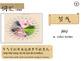 Chinese solar terms (中國節氣)
