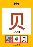 Chinesee Flashcard_贝_Shell