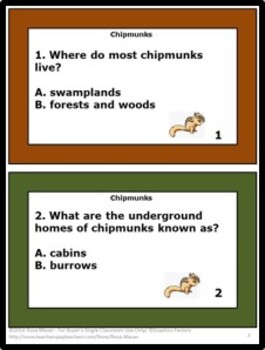 Chipmunks Nature's Children