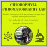 Chlorophyll Chromatography Lab