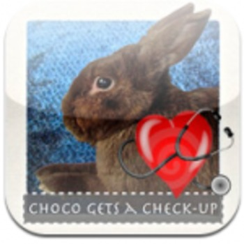 """""""Choco Gets a Check-Up"""": Reading Strategies"""