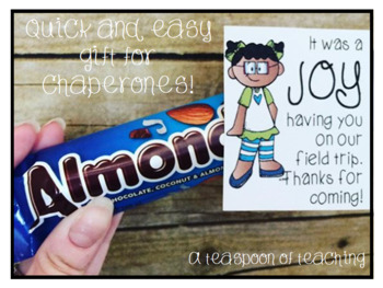 Chocolate Bar Tags for Chaperones