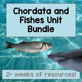 Chordata and Fishes Unit