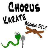 Chorus Karate - Brown Belt - Singing Lessons & Vocal Exploration