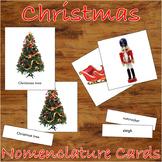 Christmas - 3 Part Montessori Nomenclature Cards