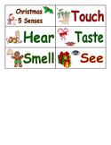 Christmas 5 Senses Word Wall