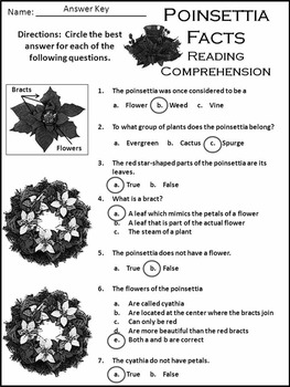Christmas Reading Activities: Poinsettia Facts Christmas Activity Packet