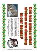 Christmas Adjectives Practice / Writing / Bulletin Board