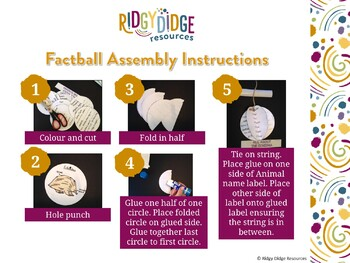Christmas Around the World Factballs Craftivity and Fact Sheets