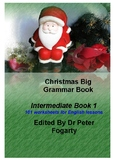 Christmas Big Grammar Book Intermediate Book 101 worksheet