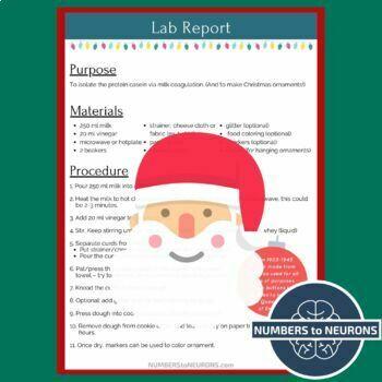 Christmas Lab - Casein Coagulation - Milk Plastic Ornaments