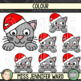 Christmas Cat Page Toppers Clip Art