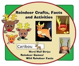 Christmas Crafts : Reindeer Crafts and Activities