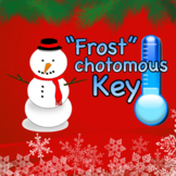 "Christmas Dichotomous Key Worksheet: ""Frost""chotomous Key"