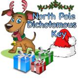Christmas Dichotomous Key Worksheet: The North Pole Dichotomous Key