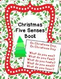 Christmas Five Senses Book