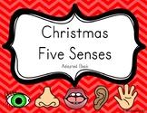 Christmas Five Senses Adapted Book