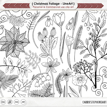 Christmas Flower Black Line Art, Poinsettia Digital Stamp, Hand-Drawn
