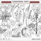 Hand Drawn Christmas Line Art, Flowers, Foliage, Flowers Poinsettia Doodle