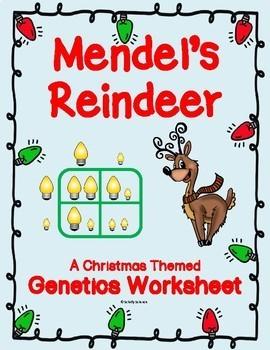Christmas Punnett Square Worksheet - Reindeer Genetics