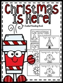 Christmas Guided Reading Book