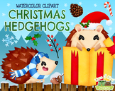 Christmas Hedgehogs Watercolor Clipart   Instant Download