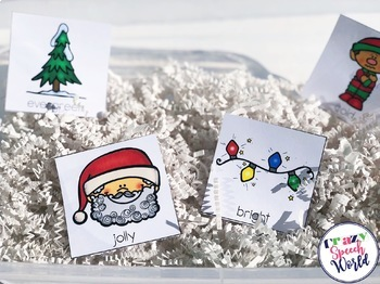 Christmas Interactive Vocabulary Activities