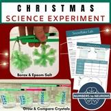Christmas Lab - Borax & Epsom Salt Snowflake Ornaments vs Snow Crystals