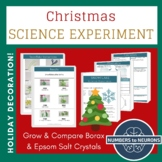 CHRISTMAS LAB Borax & Epsom Salt Snowflake Ornaments vs Sn